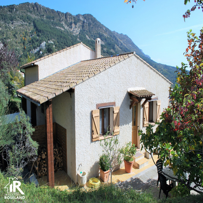 Offres de vente Villa Toudon (06830)